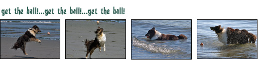 Get the Ball photo